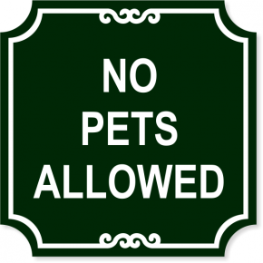 "No Pets Engraved Plastic Sign | 12"" x 12"""