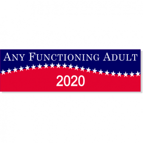 "Any Functioning Adult 2020 Bumper Sticker | 3"" x 10"""