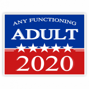 Any Functioning Adult 2020 Yard Sign