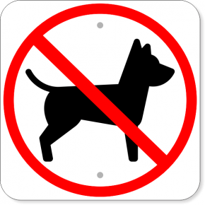 "No Pets Square Aluminum Sign | 12"" x 12"""