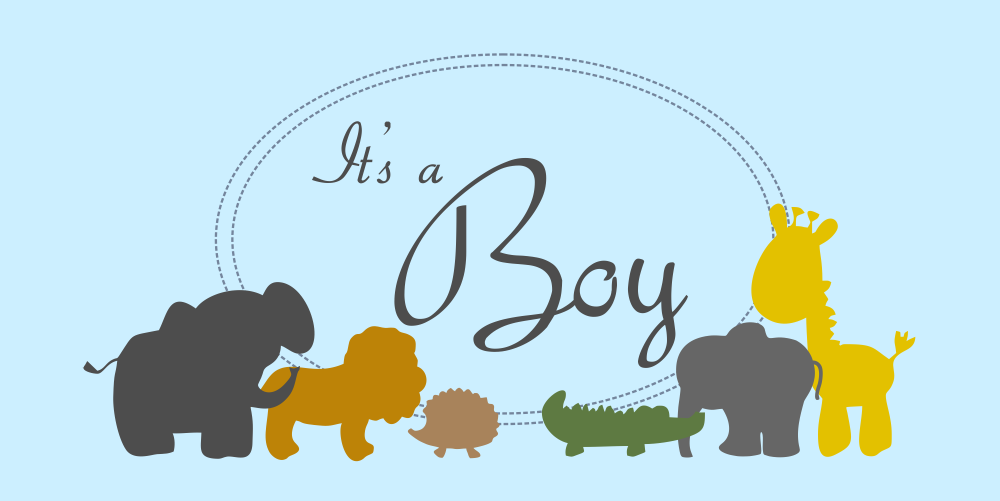 its a boy zoo animals baby shower banner