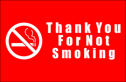 Plastic Thank You For Not Smoking Sign
